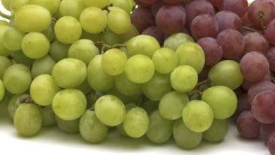 Photo of GRAPES